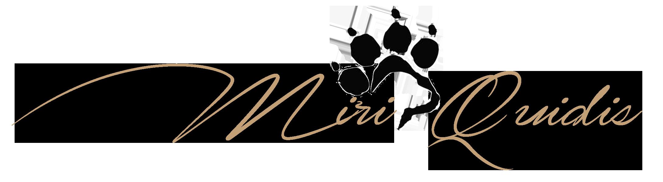 Miriquidis Labradors